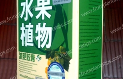 fruta planta caja sellos certificado lateral
